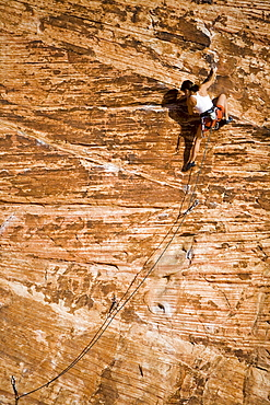A woman climbing at the sandstone wall of Calico Basin, in Red Rocks Canyon Conservation Area.