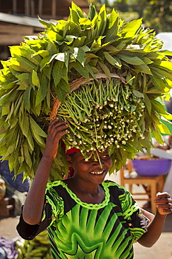 Woman Carries Cassava Leaves on head to market