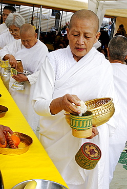 A LAotian-American female monk with shaved head makes an offering of rice during  worship as the  Laotian American community celebrates the Buddhist new year by gathering at a property in suburban East Hartford Connecticut on April 28, 2007. Several shrines are set up on the property. The celebrants leave offerings of food, flowers and money, pray, dance, and feast for a day. Immigrants from Laos, including the  Hmong people,  are refugees from the Vietnam War era, when they helped United States in the war.