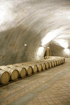 The new wine cellar at Azienda Agricola Elio Grasso in Monforte d'Alba, Piedmont, Italy.