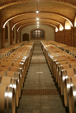 Wine ages in barrel in Piedmont, Italy.