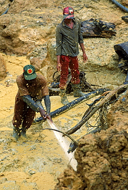 Gold mining in a forest near Benzdorp. Miners, mostly Brazilians, use high pressure hoses for mining. Suriname
