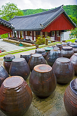 Clay pots for Kimchi at the temple complex at Hawsun in south Korea in the Jeonam province