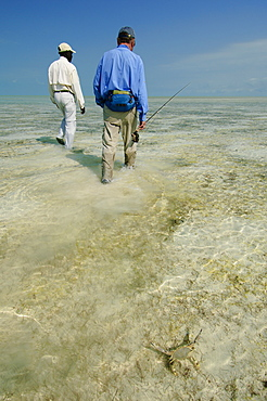 Fly fishing for bonefish in the Bahamas.