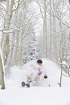 A man skiing fresh powder in the aspen trees of Snowbird, Utah