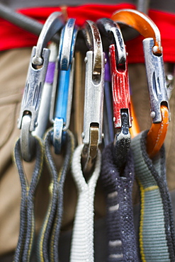 Quickdraws racked on a climbers harness in Kootenai Creek, Montana.