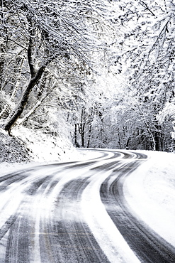 Snowy Road in Hood River Oregon, United States of America