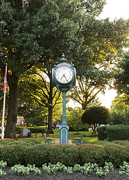 Park Clock