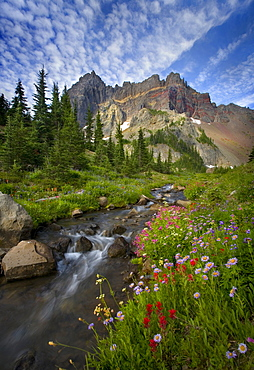 Beautiful wildflowers and stream beneath Oregon's Three Fingered Jack Peak.