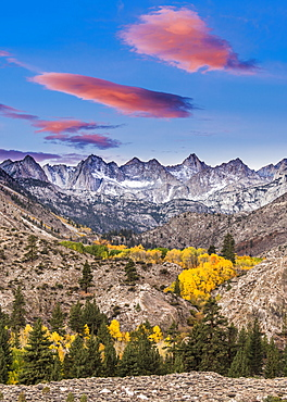 Fall sunrise with glowing clouds and aspen, Eastern Sierra California