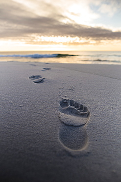 Early morning footprints in the sand along the beach at Tasmania's Bay of Fires on the East Coast.