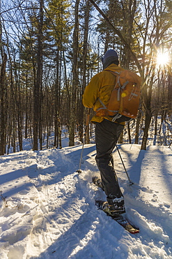 A Man Snowshoeing On Kennard Hill In Epping, New Hampshire