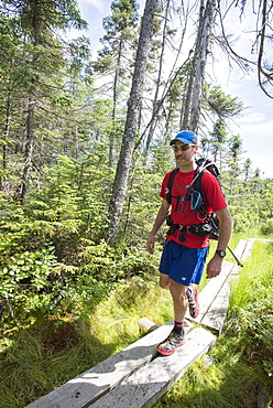 Male Hiker Walking On Boardwalk Surrounded By Grassyland In Forest