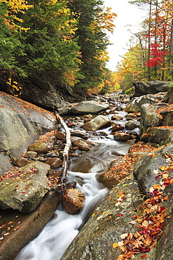 A stream trickles through colorful New Hampshire during the Fall season