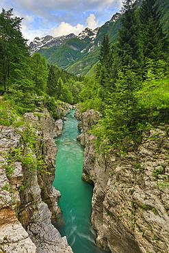 Soca River Flowing Through A Narrow Canyon In Bovec, Slovenia