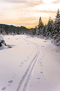 Ski Tracks Along The Frozen Snowy Landscape Over Opalescent River Near Flowed Lands, Adirondack Park