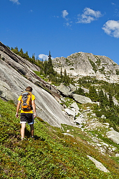 A Backpacker Approaches Vicuna And Guanaco Peaks Via The Meadows In British Columbia, Canada
