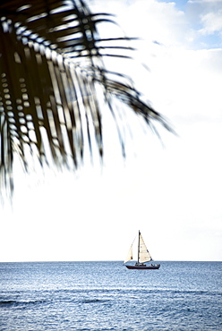 Sailing cruise through the Windward Islands of the Lesser Antilles of the Caribbean