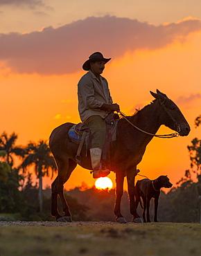 Campesino sitting on horse with dog at sunset