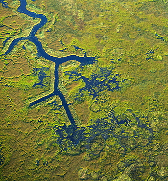 Aerial photograph of the Pitt Polder Ecological Reserve, British Columbia, Canada.