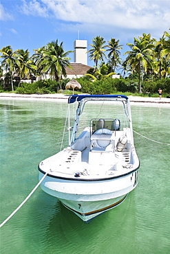 Motorboat moored on water with beach and palm trees in background, Isla Contoy, Mexico