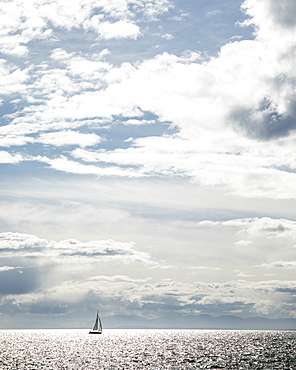 A single sail boat sails past Light House Park in West Vancouver, British Columbia on a beautiful late summer day. The mountains of Vancouver Island can be seen in the distance. Vancouver, British Columbia, Canada