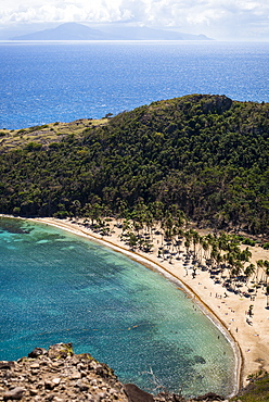 Aerial view of beach with palm trees, Bourg de Saintes, Isles des Saintes, Guadeloupe