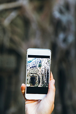 View of temple ruins on smartphone screen held by woman, Siem Reap, Cambodia