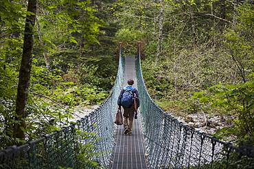 A Person Walking Over A Suspension Bridge In China Beach; British Columbia Canada