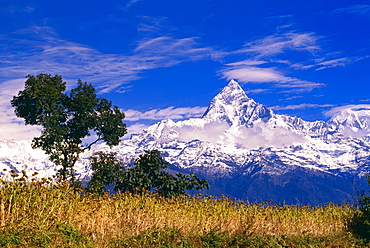 View Of Machhapuchhare From Sarangkot, Annapurna Region, Nepal