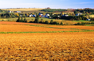 Small Town And Field, Hampton, Prince Edward Island, Canada