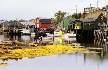 Fishing Village Of West Dover, Newfoundland, Canada