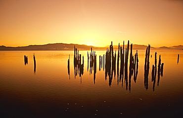 Tillamook Bay At Sunrise, Oregon, Usa