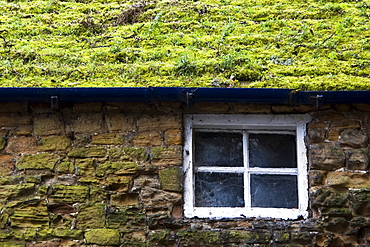 Cottage With Grassy Roof