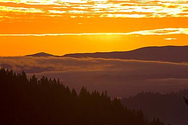 Sunrise, Willamette Valley, Oregon, United States Of America
