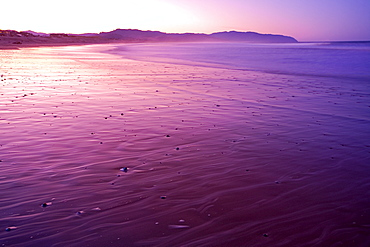 Low Tide At Cape Kiwanda, Oregon, United States Of America