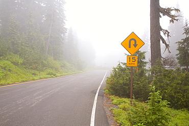 Foggy Road, Mount Rainier National Park, Washington, Usa