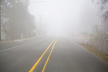 Foggy Expanse Of Road