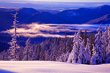 Winter Snow, Cascade Range, Oregon, Usa