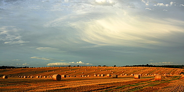County Cork, Ireland, Hay Bales After The Harvest Near Mallow