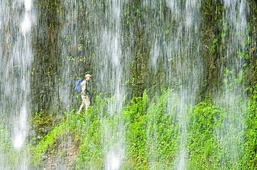 Middle North Falls, Silver Falls State Park, Oregon, Usa, Hiker