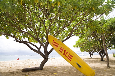 Surf Rescue Surfboard On The Sand