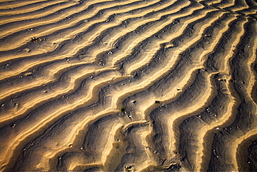 Zanzibar, Tanzania, Sand Patterns