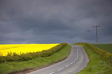 Rural Road, North Yorkshire, England