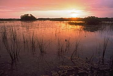 Sunrise Over Marsh, Everglades National Park, Florida, Usa