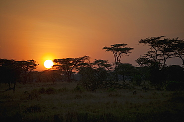 Sunrise On An African Landscape