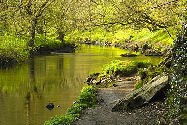 Cressbrook, Derbyshire, England, River Wye In Peak District National Park