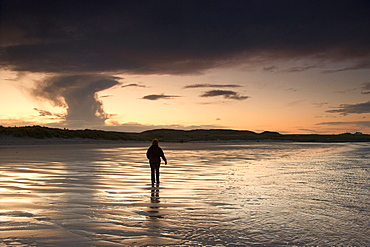 Bamburgh, Northumberland, England, A Person Walking In The Water Along The Shore Of The Beach