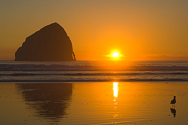 Oregon, United States Of America, Cape Kiwanda And Haystack Rock At Sunset