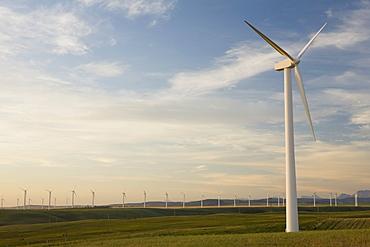 Pincher Creek, Alberta, Canada, Wind Mill Farm
